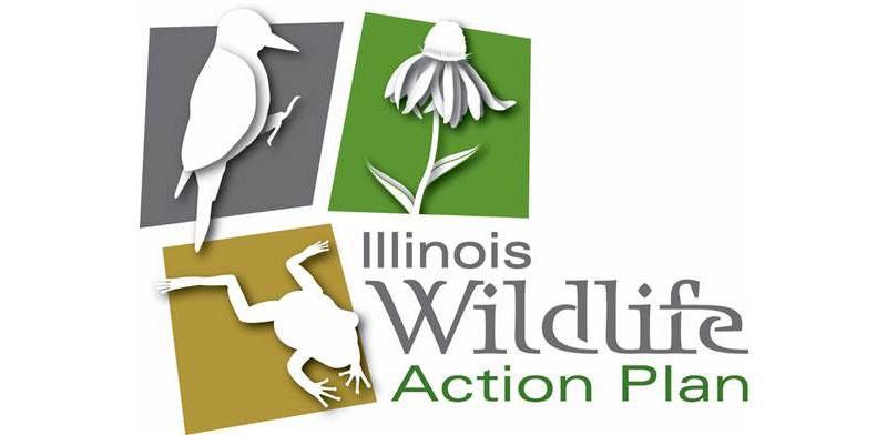 Logo for Illinois Wildlife Action Plan