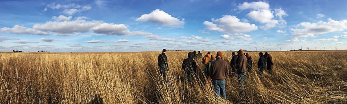 A group of researchers are in a prairie that is prime pheasant habitat. There is a bright blue sky with small fluffy clouds in the background.
