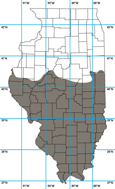 A map of the state of Illinois showing county lines and the latitude and longitude. Dark grey covers a little over half of the state indicating the range of Nine-banded Armadillo in Illinois.
