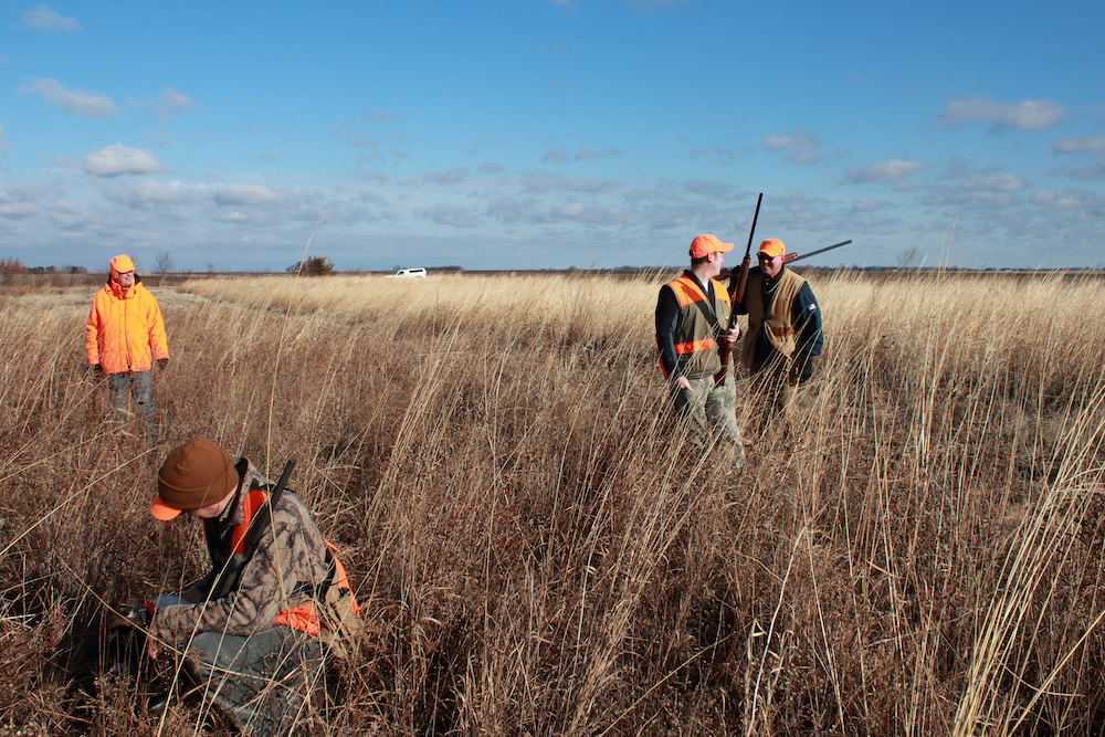 Four hunters in blaze orange gear are walking in a grassland. A blue sky is in the background with a few little clouds scattered along the horizon.