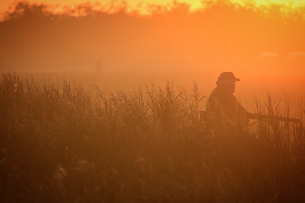 A hunter with a shotgun stands on the edge of a grassy field and is silhouetted against a yellow, orange sunset.