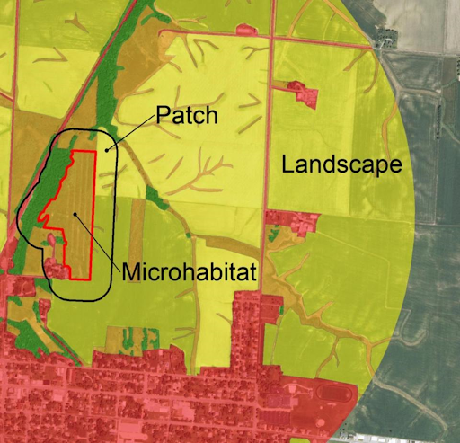 An aerial map of a research sample area and surrounding agricultural fields and urban areas. On the map woodlands and grasslands are indicated by green and tan.