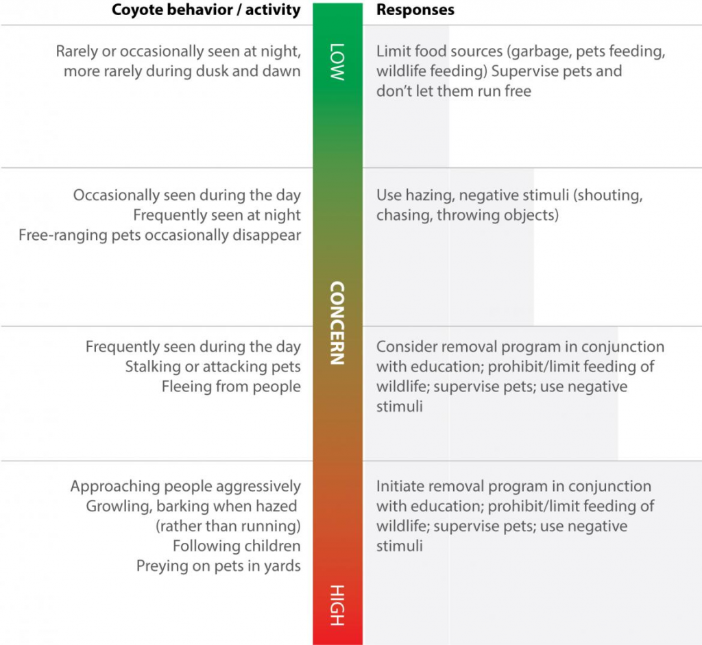 A chart indicating different coyote behaviors and how humans should respond.