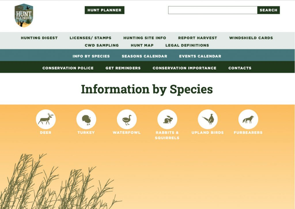 A screenshot of the Hunt Illinois website on the Information by Species page. Users can select an animal icon and get information on that particular animal.