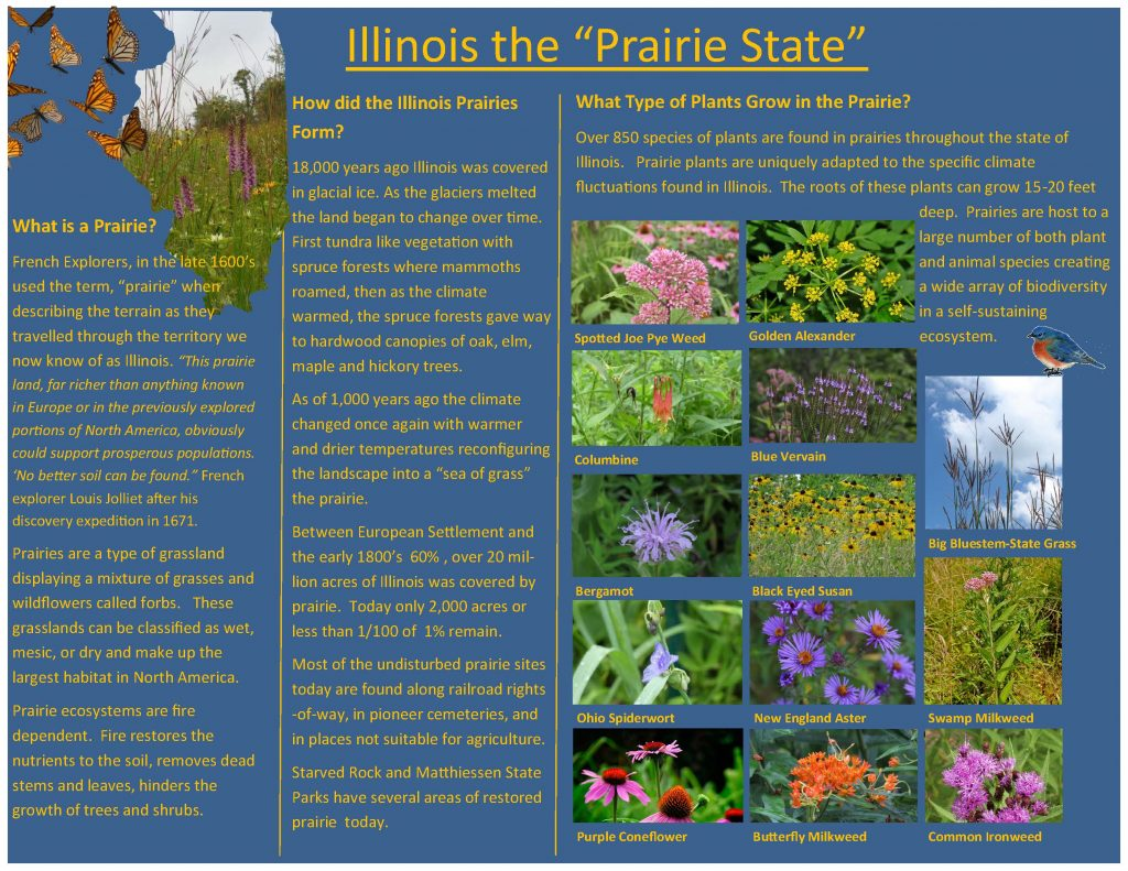 An interpretive sign for a nature center. It has a blue background and various photos of prairie plants.