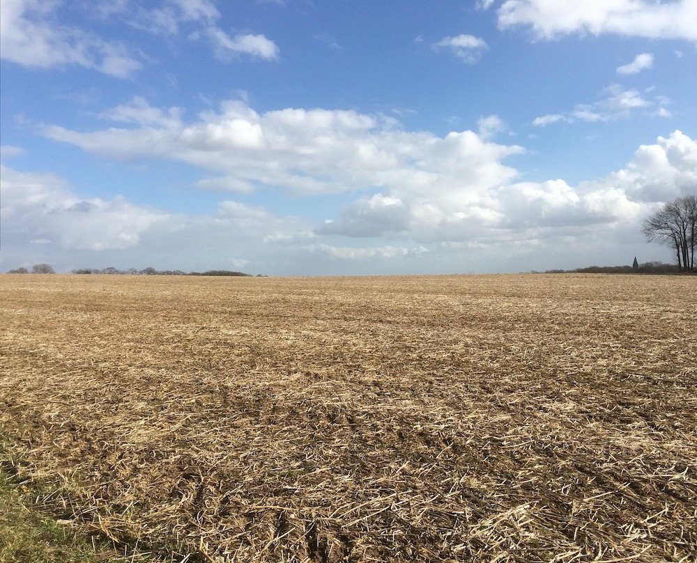 An agricultural field is harvested and barren. In the background are trees against a partly cloudy blue sky.