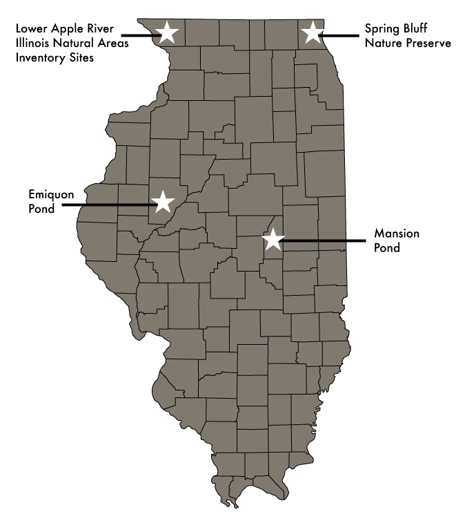 A gray map of the counties of Illinois with four stars indicating the location of different natural areas around the state.