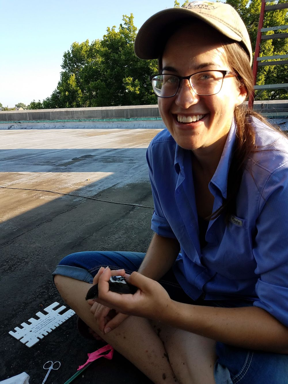 A biologist sitting cross-legged is holding a small black bird in her hand.  She is sitting on a flat rooftop. Tree canopies are in the background. Assorted tools for her work are in the foreground.