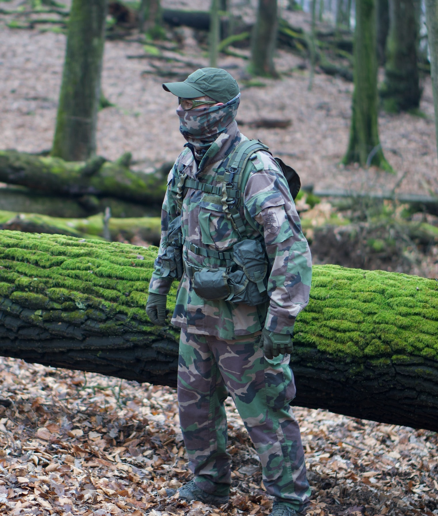 In a forest a hunter in camouflage gear is gazing to the left. Behind the hunter is a fallen log covered in green moss.