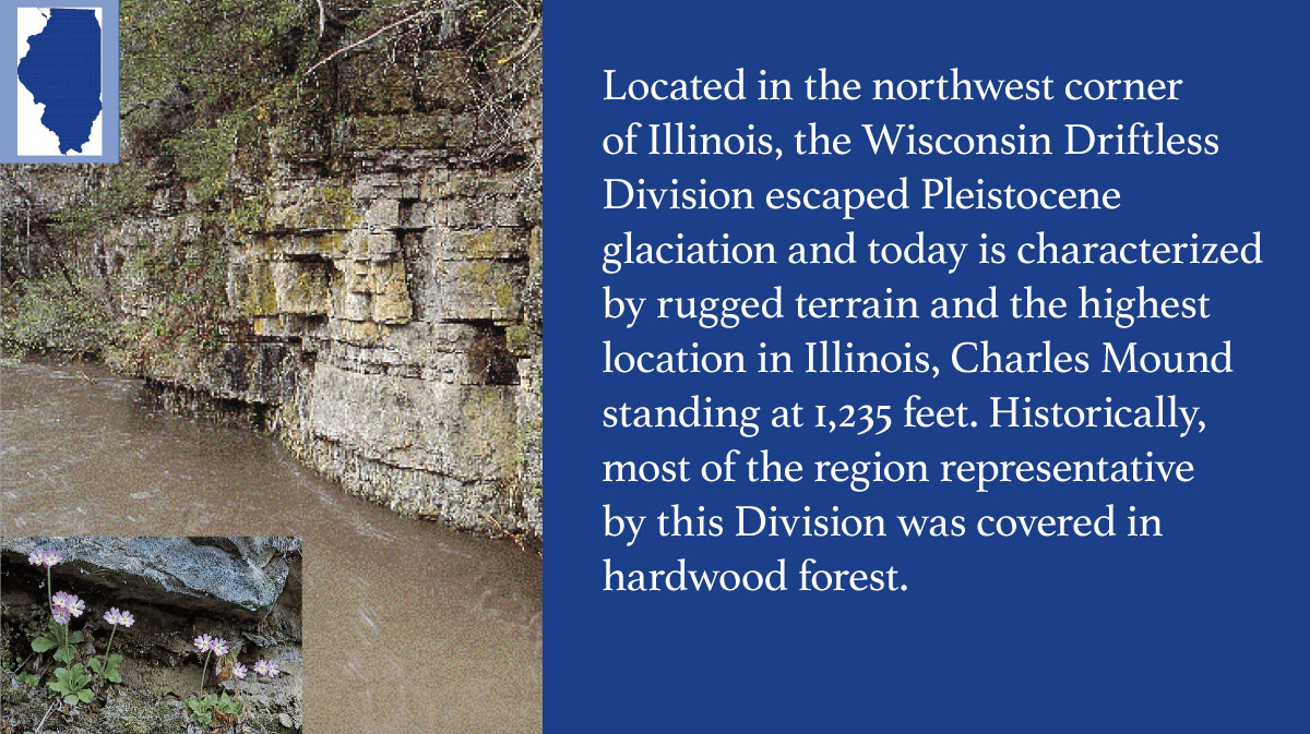 A graphic indicating the Wisconsin Diftless Division of Illinois.