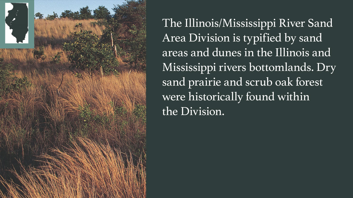 A graphic indicating the Illinois/Mississippi River Sand Areas Division of Illinois.