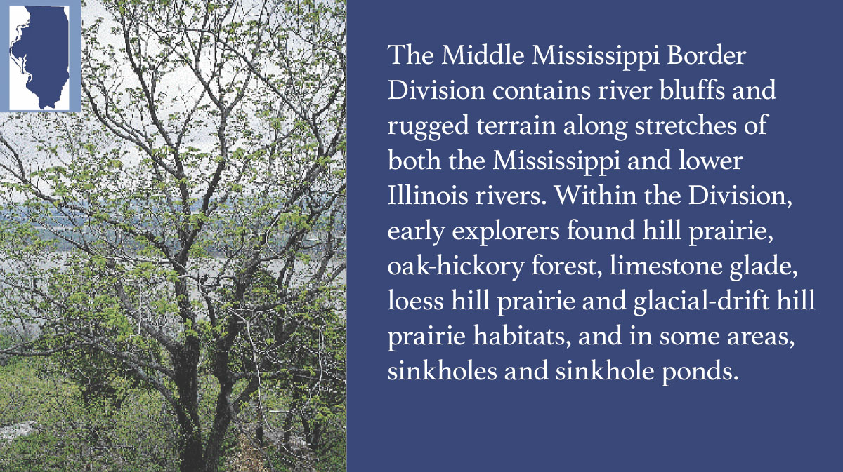 A graphic indicating the Middle Mississippi Border Division of Illinois.