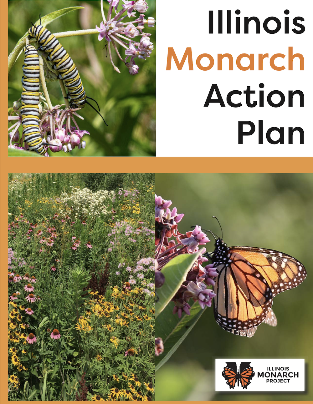 The cover of the Illinois Monarch Action Plan publication. It has a photo of two monarch caterpillars eating a milkweed plant. It also has a photos of prairie flowers and a photo of a monarch sipping nectar on a milkweed plant.
