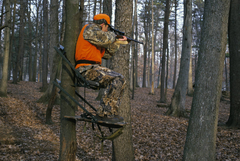 A hunter wearing blaze orange and camouflage gear sits in a tree-stand and aims a gun waiting for a deer to cross his path. The hunter is in a forest.