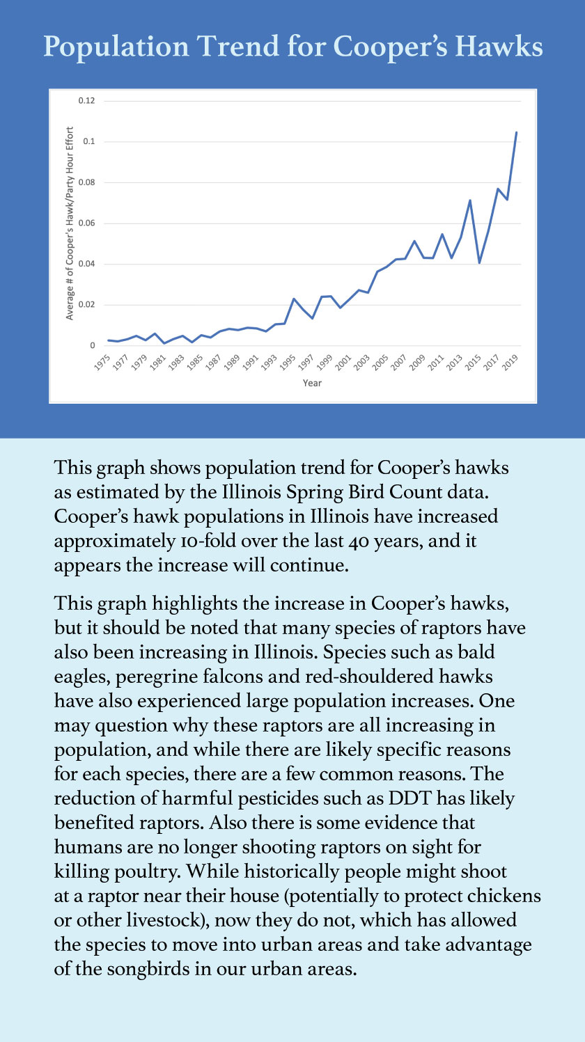 A graph indicating the population trend for Cooper's hawks as estimated by the Illinois Spring Bird Count data.