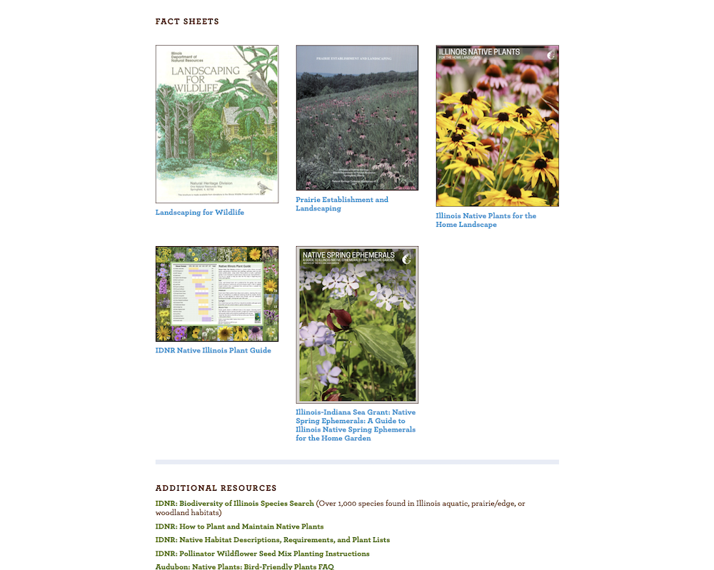 A section of the new CICADA website including different publications with fact sheets and more resources for users.