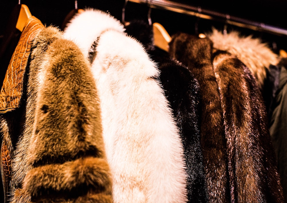 Several brown, black, and white fur coats on hangers are displayed on a shiny silver metal rack.