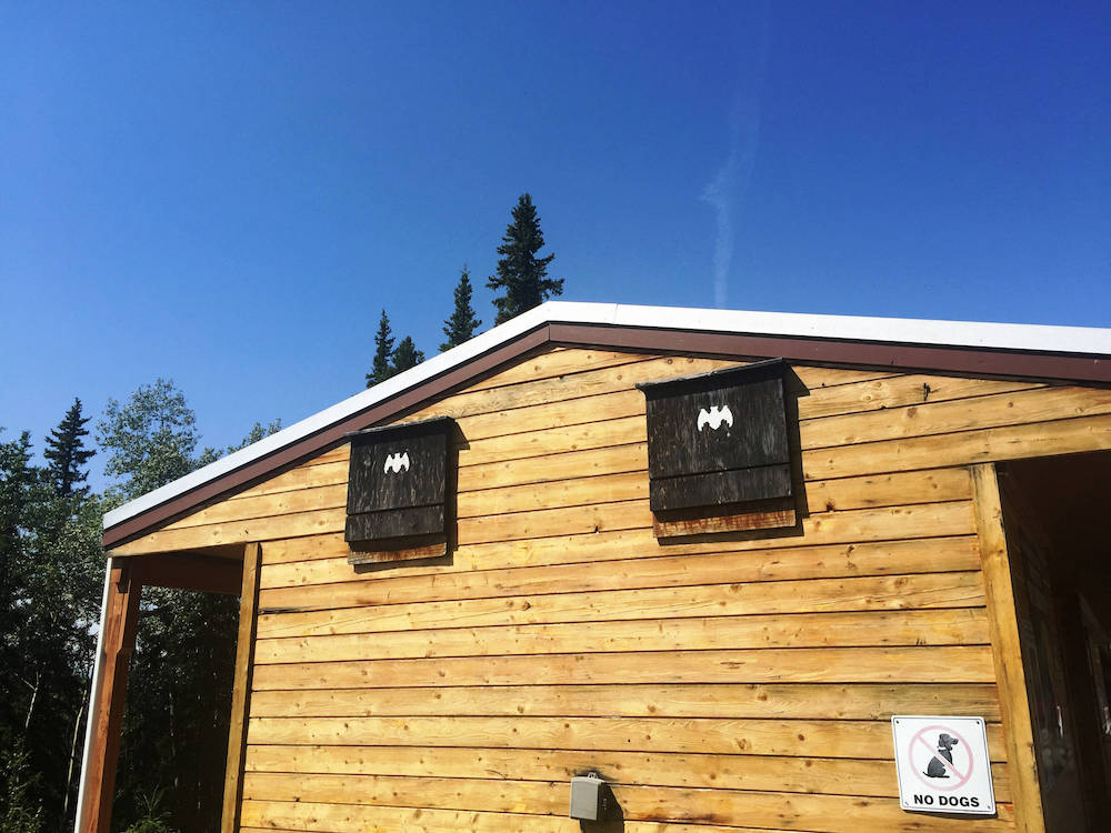 Two black bat boxes are installed on the side of the house on the wooden siding near the roof. In the background is a blue sky and trees.