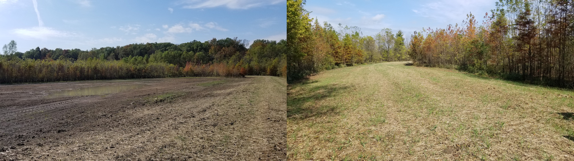 Two images from different perspectives of a newly created low level berm to control drainage of water. In the background of the images are trees.