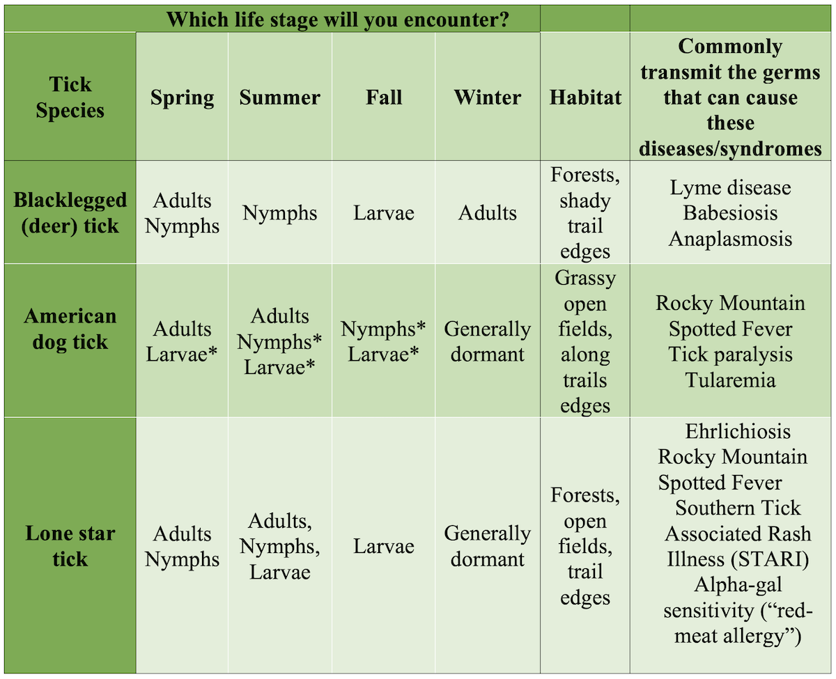 A table listing the type of tick and what life stage one might encounter in the outdoors during different parts of the year. The table also includes the habitat and the commonly transmitted germs.