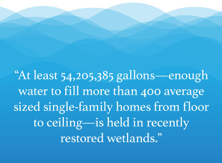 """A graphic with blue water in the background and test in the foreground says """"At least 54,205,385 gallons—enough water to fill more than 400 average sized single-family homes from floor to ceiling—is held in recently restored wetlands."""""""