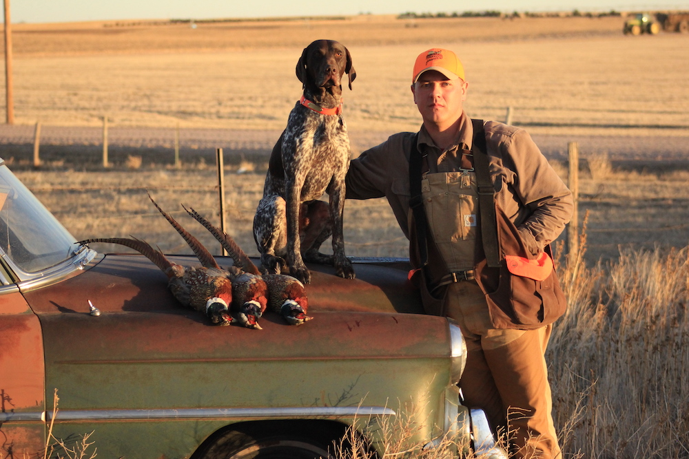 A man wearing a blaze orange ball cap and khaki stands next to an old car. The man has his arm around a hunting dog that is sitting on the hood of the car. In front of the hunting dog is three harvested pheasants. In the background is a tan recently harvested agricultural field. A tractor and grain wagon are in the background on the top right.