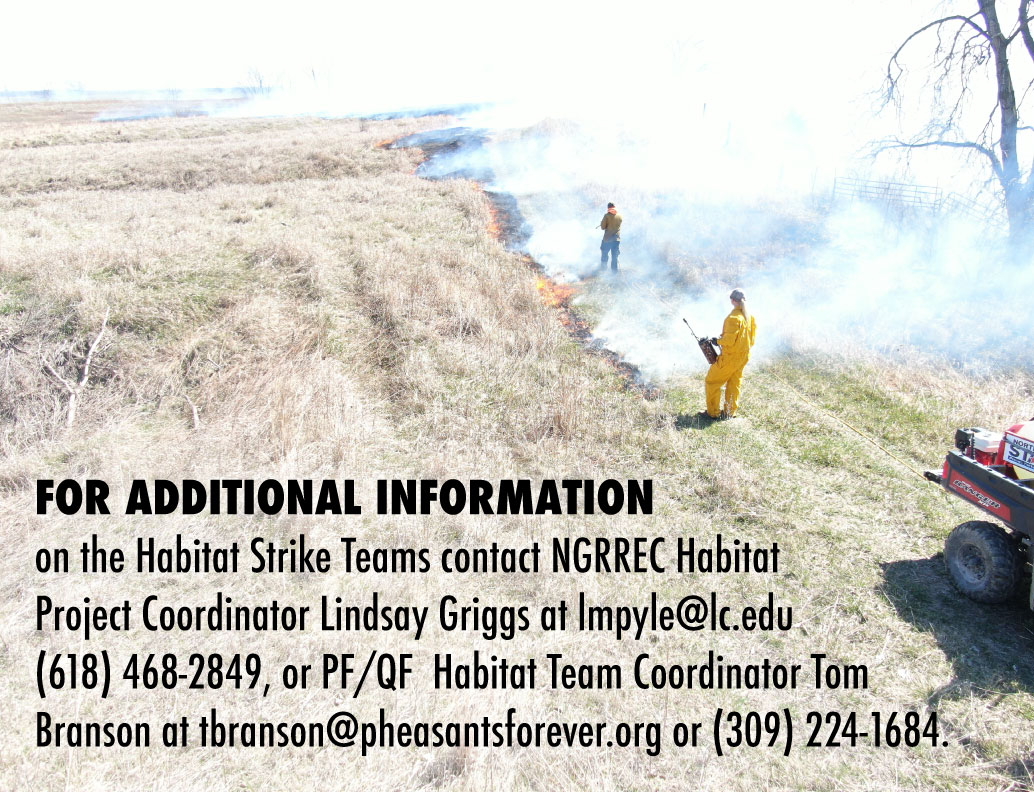 A graphic with a photo of a grassy area and two individuals conducting a prescribed burn to the area. Text overlays the photo on the bottom left and indicates where to find more information on the habitat strike team.