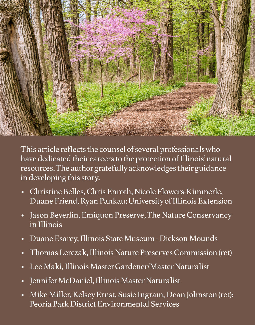 A photo of a spring woodland is at the top of a graphic. Below the photo is text regarding the guidance provided to the author by listed resources for the article.