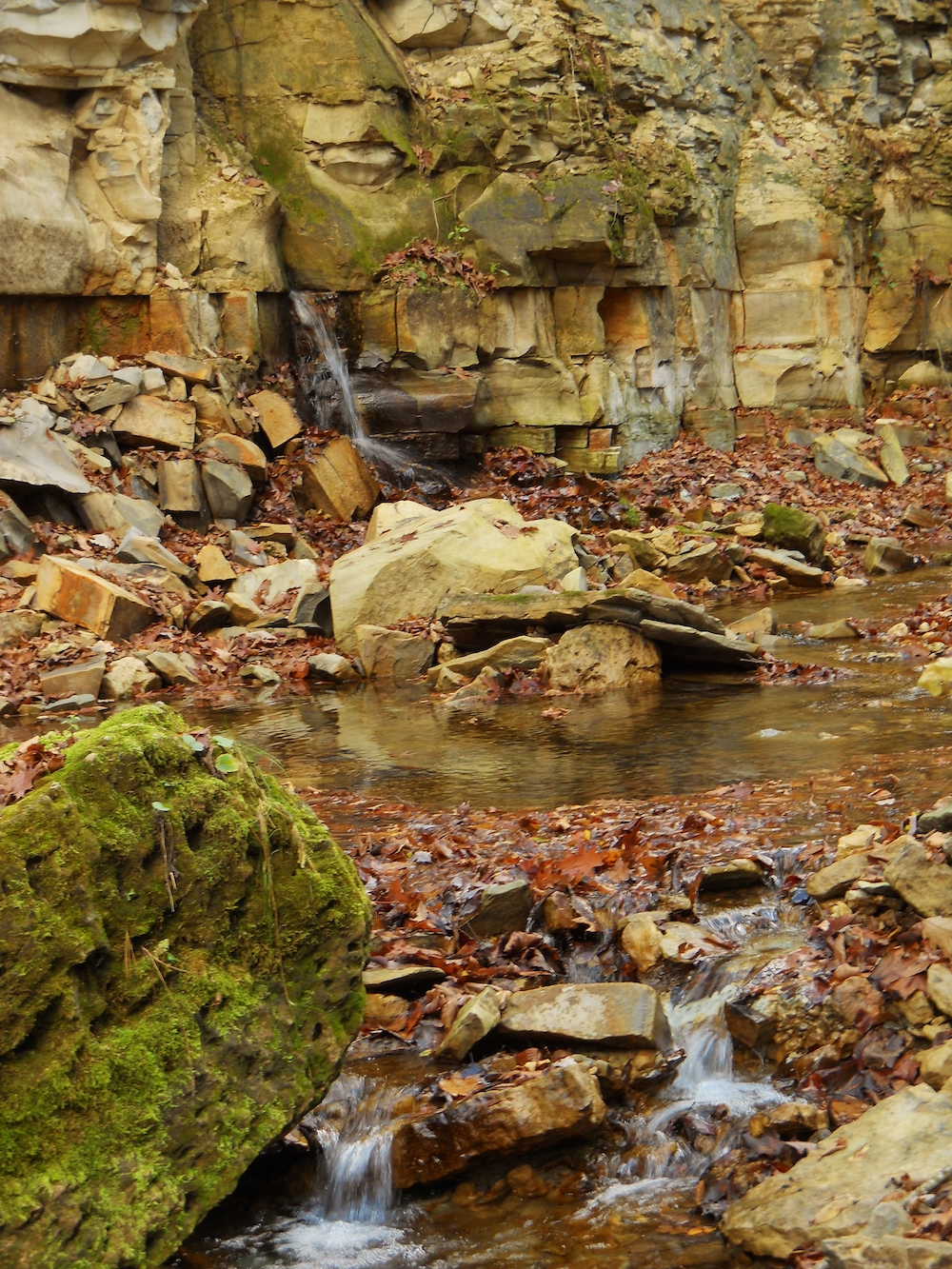 A rocky cliff with a stream running below it.