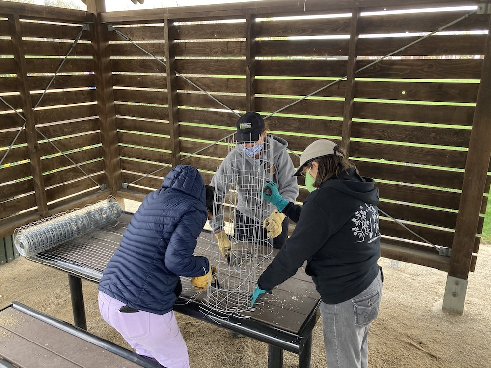Three women work to create small wire cages on top of a picnic table. the wire cages will be used to protect small rare plants in a prairie.
